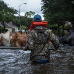 Stalled Over Gulf, Harvey Deepens Texansâ Soggy Misery