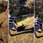 Man arrested in Melbourne after 'abhorrent' kangaroo killing
