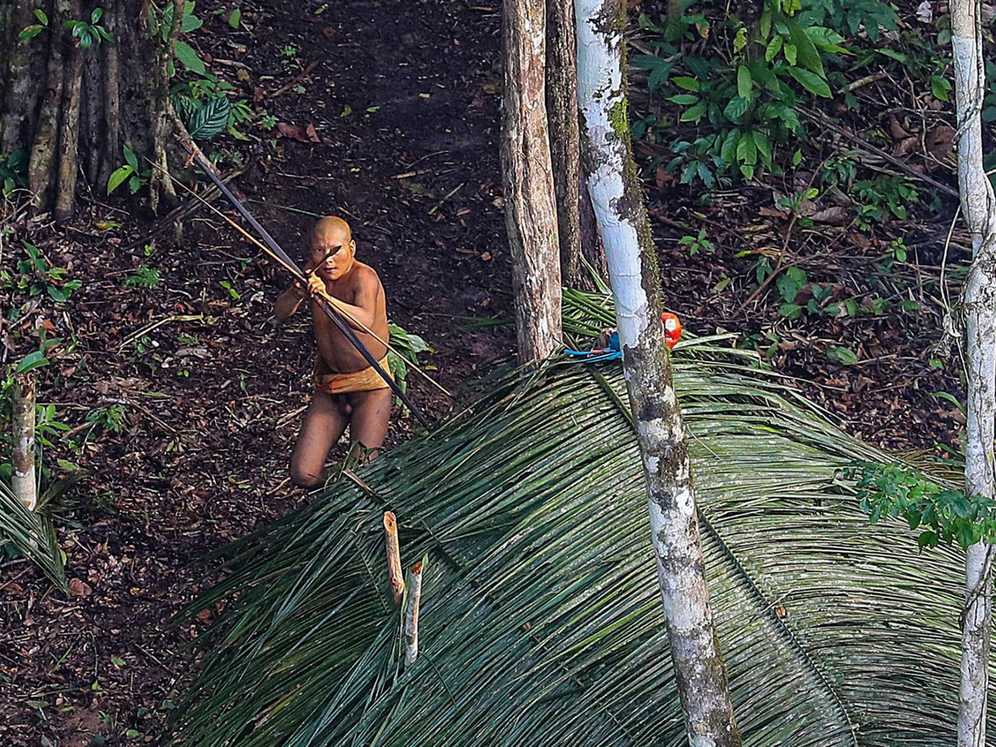Captured in jungle pron scene