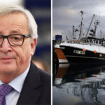 EU PLOT to scupper UK fleet and STEAL fish during Brexit 'transition period'