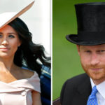 Royal Regulation! Meghan Markle And Prince Harry Less Tactile In Public For This Reason