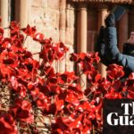 Poppies Sculptures To Be Installed In London And Manchester