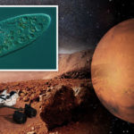 Alien discovery IMMINENT: Scientists on the BRINK of finding new life, astrobiologist says