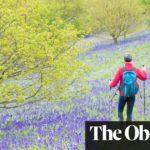 10 of the best UK spring breaks