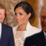 Superb piece of advice! Meghan saved Harry's strained relationship with Charles