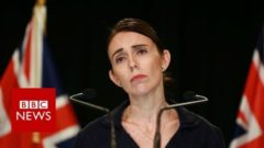 New Zealand gun laws will change, says PM