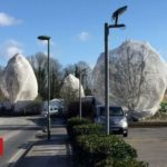 Why are nets appearing over trees and hedges?
