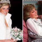 Princess Diana's Death 20 Years On: William And Harry's Plans To Remember Their Mother