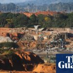 'Death by a thousand cuts': vast expanse of rainforest lost in 2018