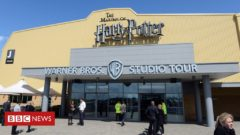 Man arrested after incident at Harry Potter studio