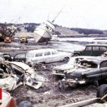 Tsunamis linked to spread of deadly fungal disease