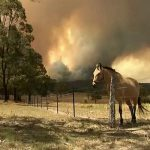 Record bushfire emergencies hit Australian state