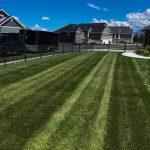 Lawn Service In Mountain Green UT