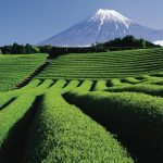 More of Japan's diverse meetings and events destinations