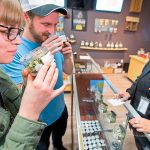 What I've learned from California's big bucks cannabis experiment