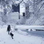 Winter Storm Niko: School Closings, Travel Delays & More