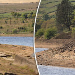 Britain could face MAJOR DROUGHTS after driest winter in more than 20 years, experts claim