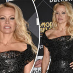 Pamela Anderson puts on an eye-popping display in VERY risqué cocktail dress