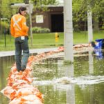 Flooding on Toronto's islands: Cancelled weddings, closed amusement parks and spawning carp