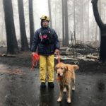 Death Toll Raised To 84 In Camp Fire; 475 Still Missing