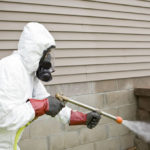 Important Things To Know About Pest & Its Control Services